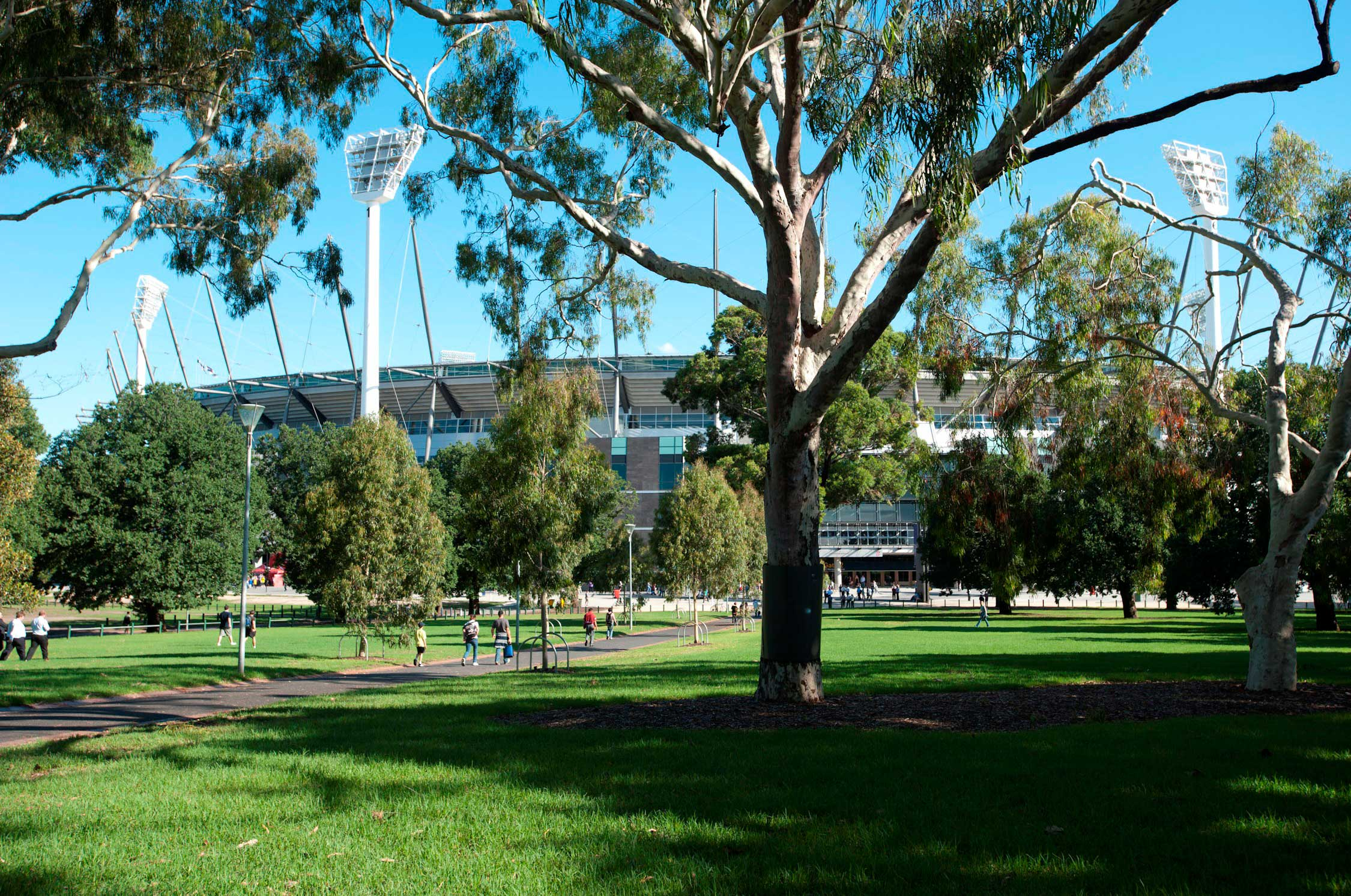 A view of the MCG from Yarra Park.